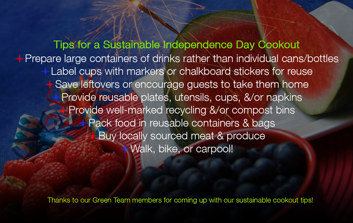 Tips for a Sustainable Independence Day