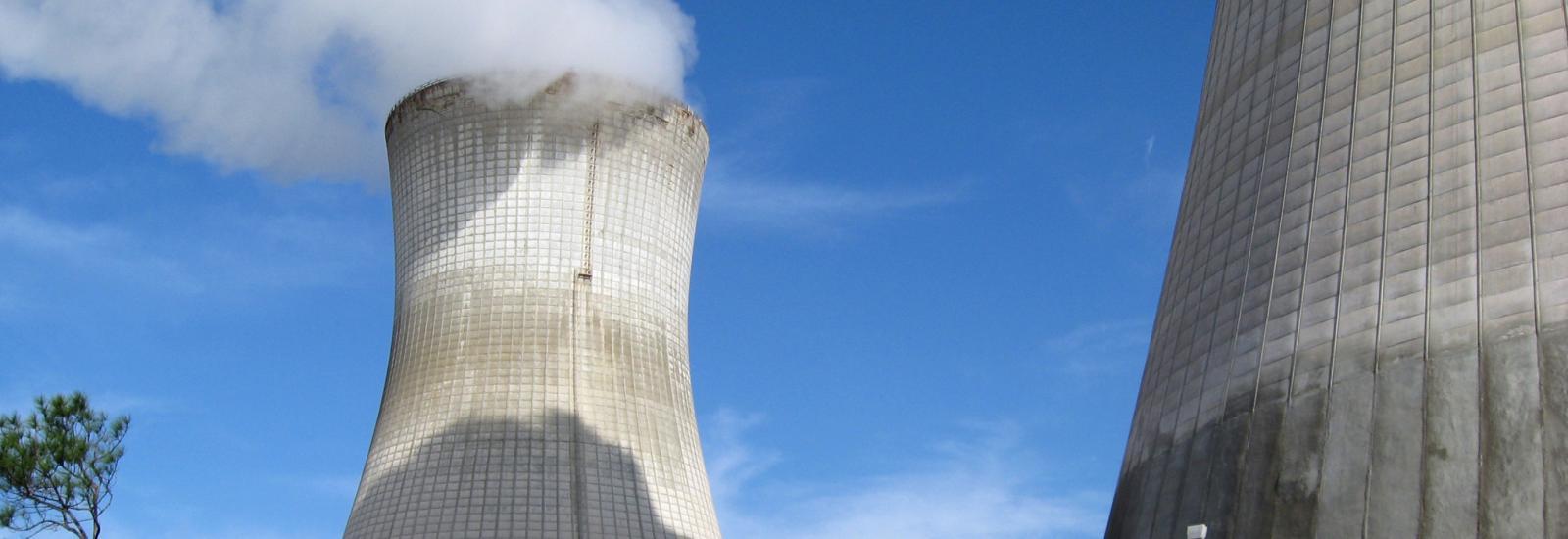 St Johns River Power Plant