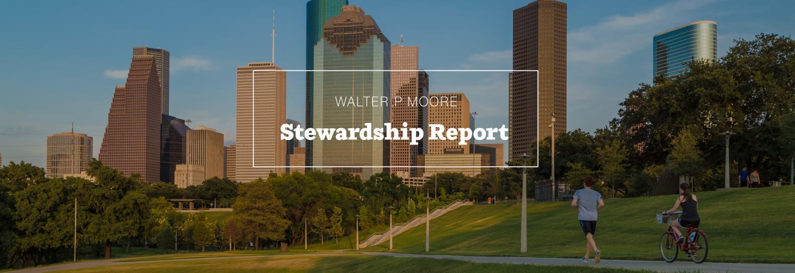 Stewardship Report Feature