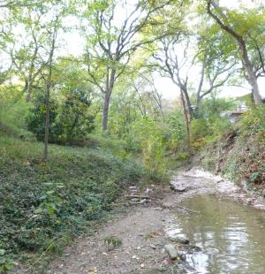 North Tributary Erosion Protection