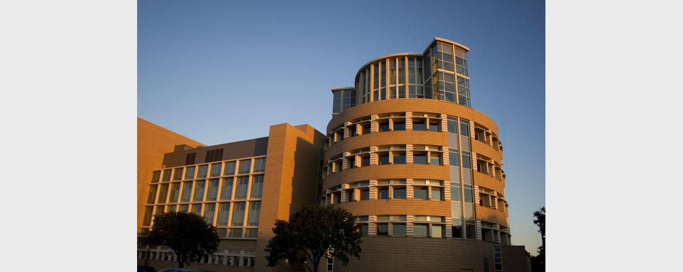 Texas A&M Mitchell Institute