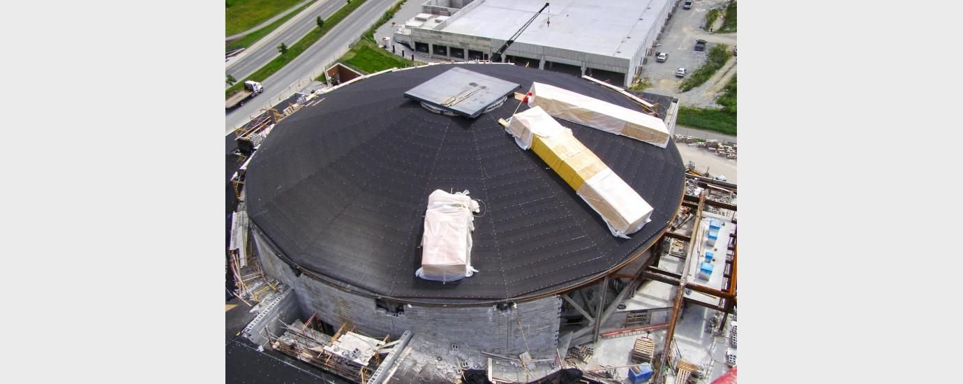 Performing Arts  Dome Failure Analysis