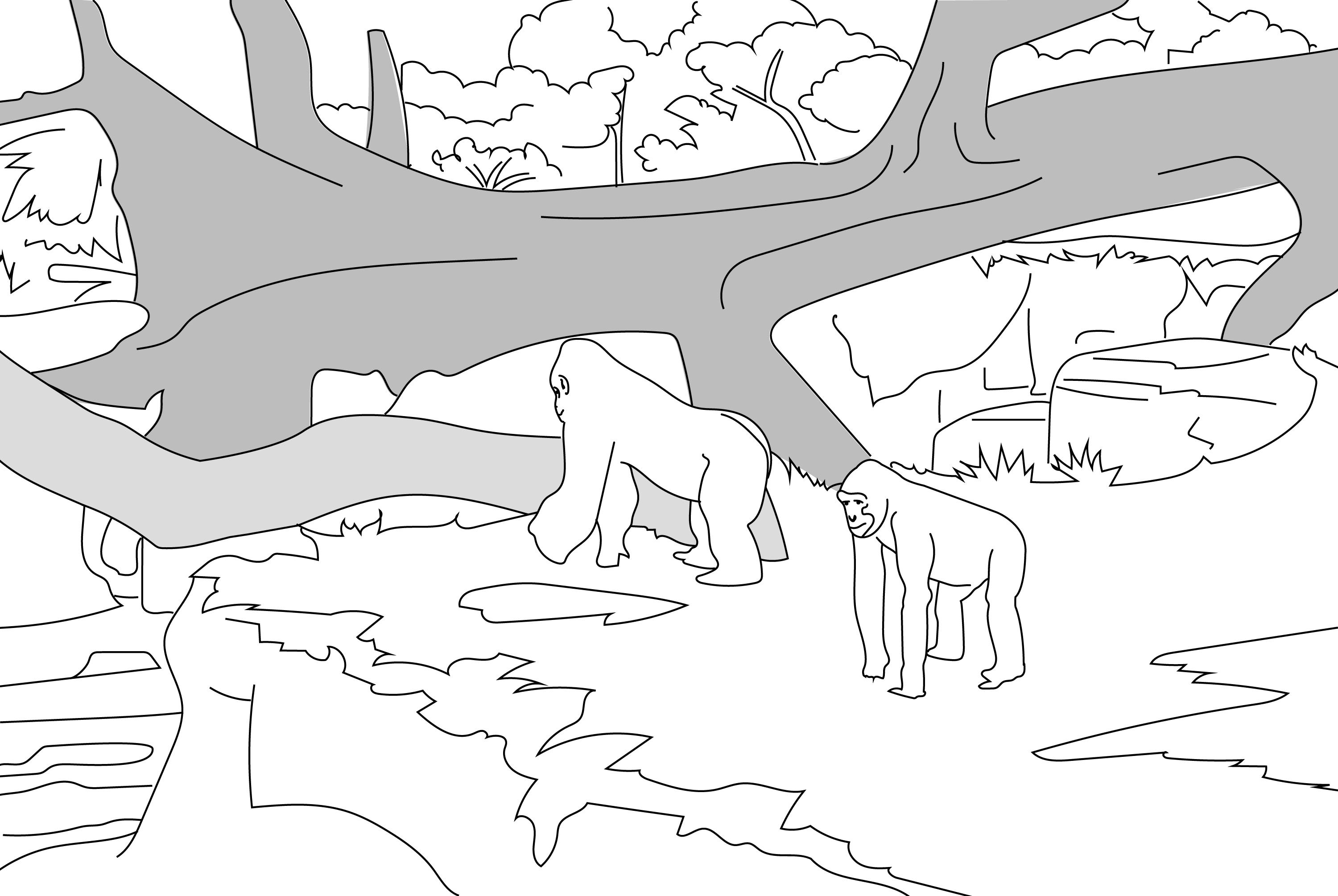 Gorillas at the Houston Zoo Coloring Page